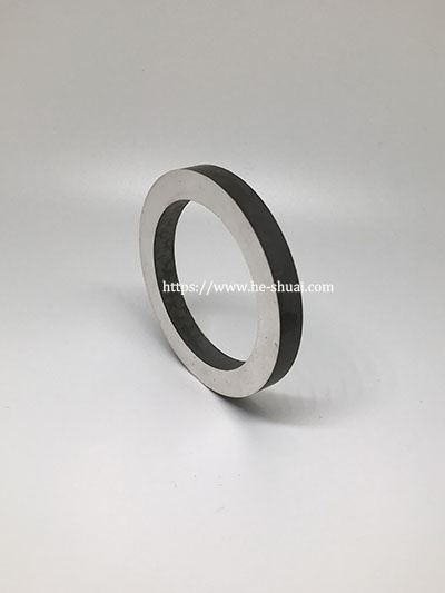 piezoelectric ring 003