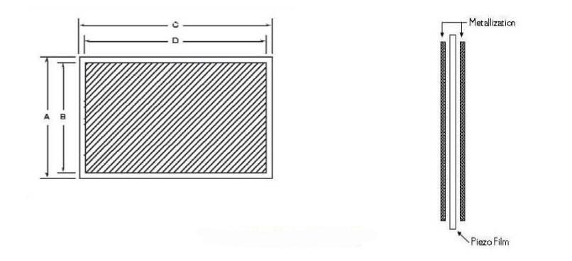 piezoelectric film drawing